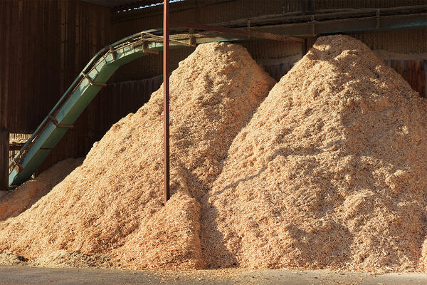 industrial-factory-piles-sawdust-wood-dust-photo-full