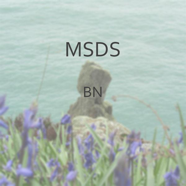 MSDS-BN-Image.jpg