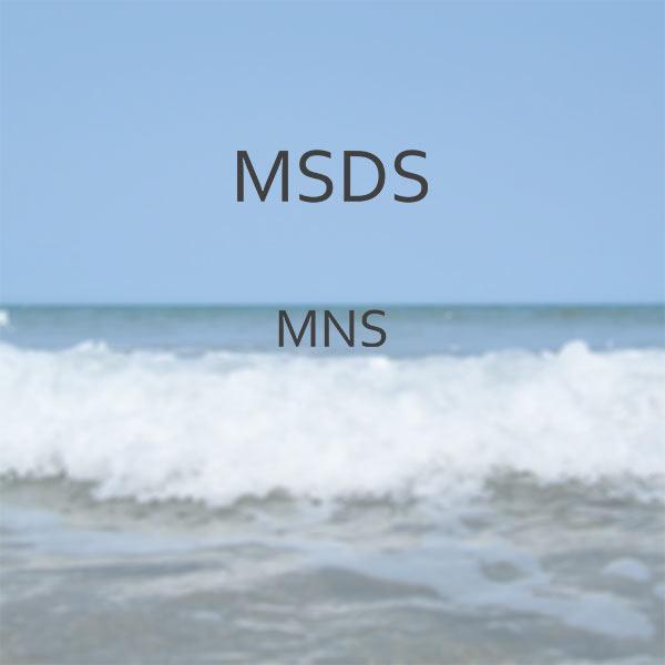 MSDS-MNS-Image.jpg